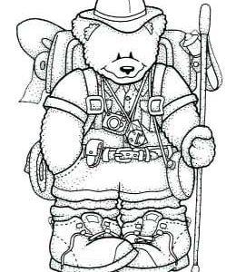 Backpack Bear