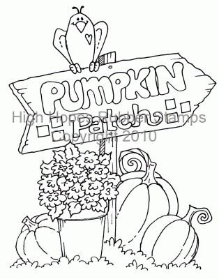 Laurie's Pumpkin Patch