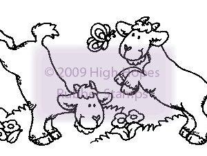 Playful Goats