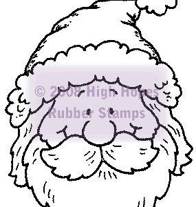 Santa Portrait