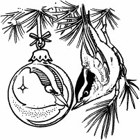 Bird and Christmas Ornament
