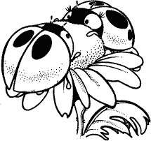 Lyle & Lucy Ladybug