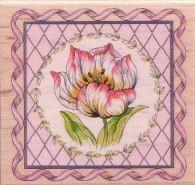Tulip in Square