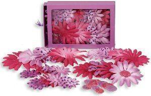 Pink - Lavender