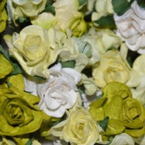 5 Curly Roses Green Mix