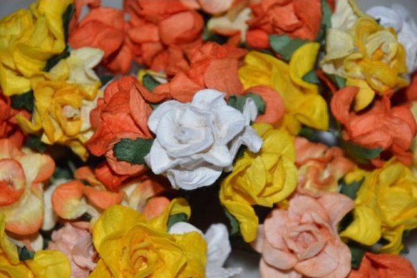 5 Curly Roses Orange Mix