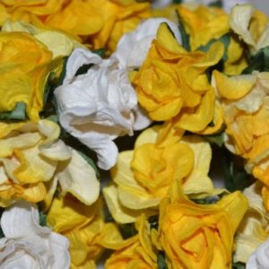 5 Curly Roses Yellow Mix