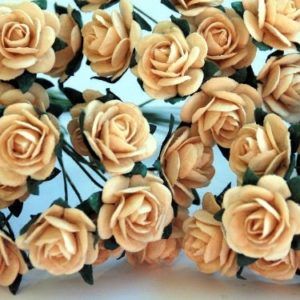 10 Deep Ivory Roses, 15mm