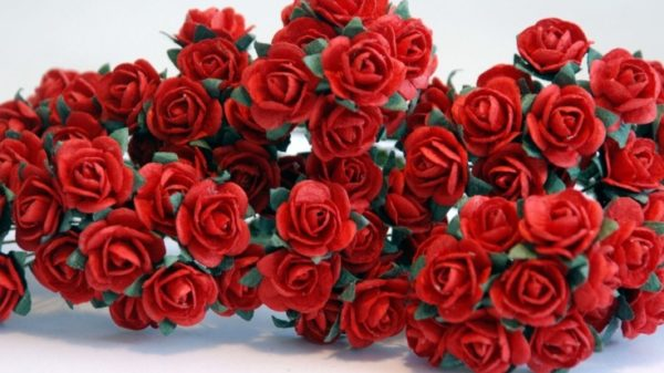 10 Romantic Red Roses, 10mm