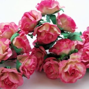 5 Pink Dream Roses, 35mm