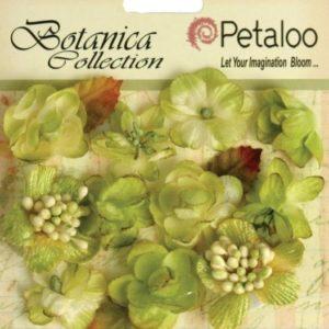 Botanica - Pistachio