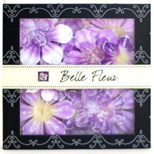 Belle Fleur - Passion