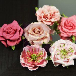 Lilliput Roses - Teaberry