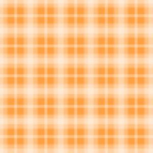 Fog Plaid - Orange