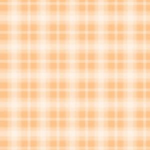 Fog Plaid - Orange Sherb
