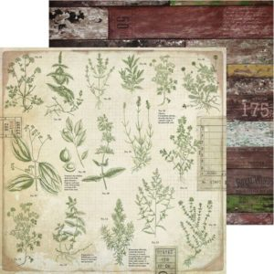 Anthology - Herbs