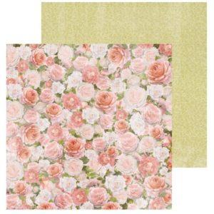 Cottage Rose - Garden
