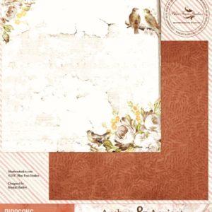 Amber & Apricot - Birdsong