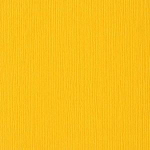 Fourz - Desert Marigold