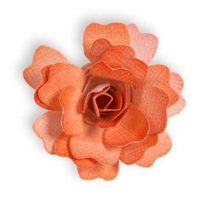 Flower, Rose 3D