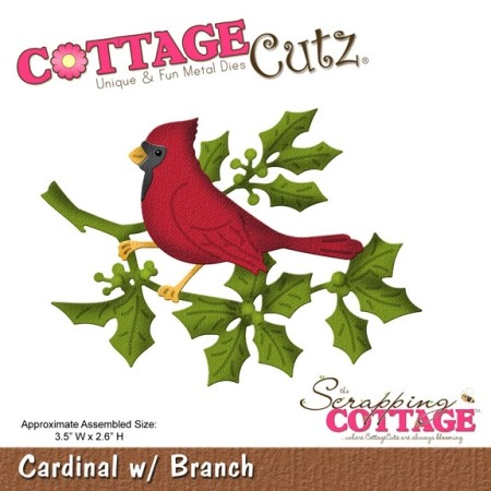 Cardinal w/ Branch