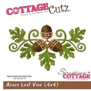 Acorn Leaf Vine