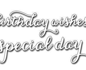 Splendid Wishes Dies