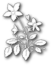Lenora Bloom