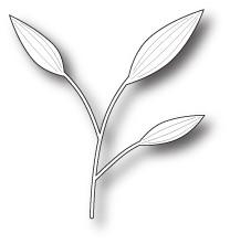 Slender Leaves