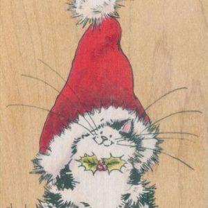 Jolly Xmas Kitty
