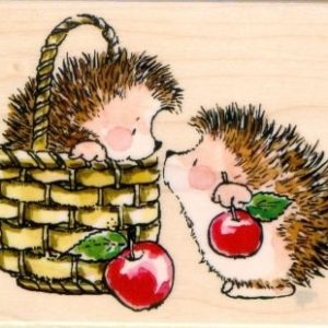 Hedgy Gift