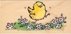 Dancing Chick!
