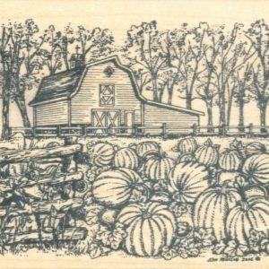 Barn & Pumpkin Patch