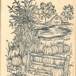 Farm with Cornstalks & Pumpkins