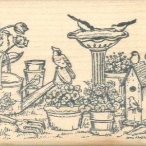 Birds, Pots & Flower Border