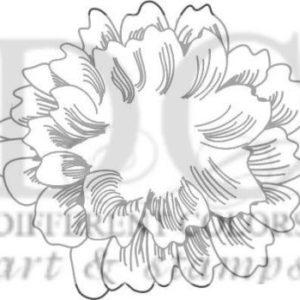 Flower Anna