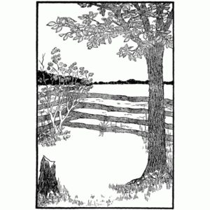 Fence With Tree Scene Frame