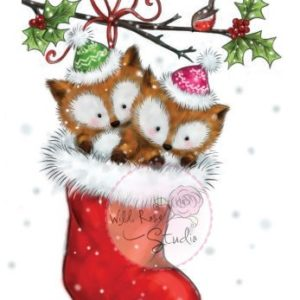 Foxes in Stocking