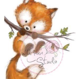 Fox on Branch