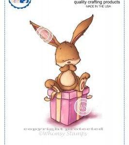 Bunny on Present