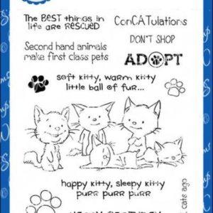 Adopt Don't Shop CATS