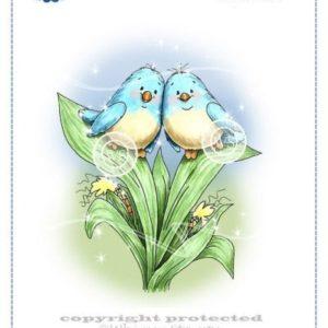 Birdies on Corn