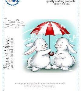 Bunny Rainy Day
