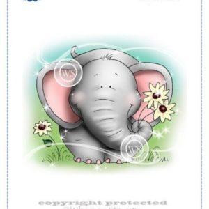 Well Rounded Elephant