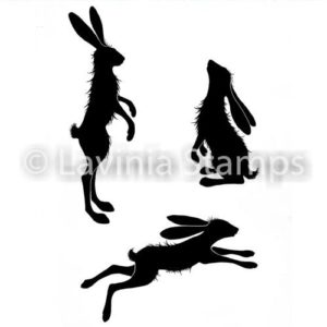 Whimsical Hares