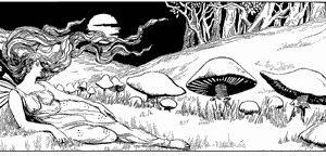 Fairy with Mushroom NEU