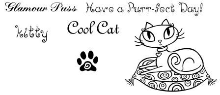 Cat 1 - Set 3