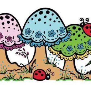 Lacey Mushrooms
