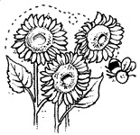 Sunflowers & Bee