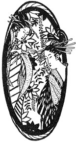 Two Geishas in Frame